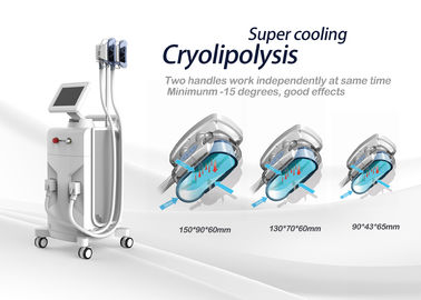 Cryolipolysis Fat Freeze Circumference And Cellulite Giảm